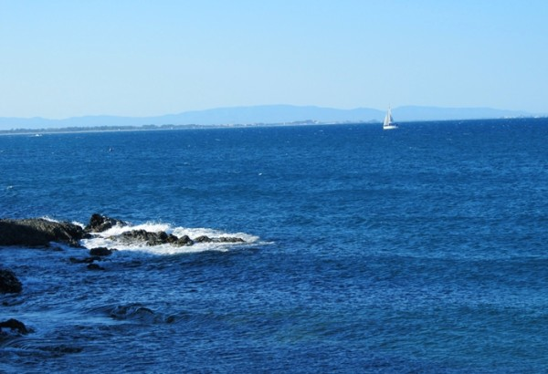 AnnHartMarquisCollioure France 2 600x410  A Change of Scenery