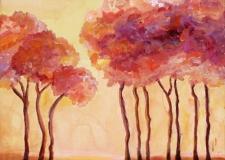 Ann Hart Marquis-Sunset