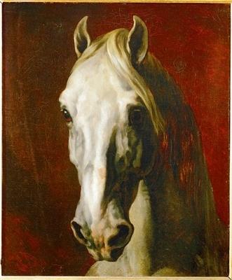 Tete de cheval blanc, 1815, Theodore Gericault