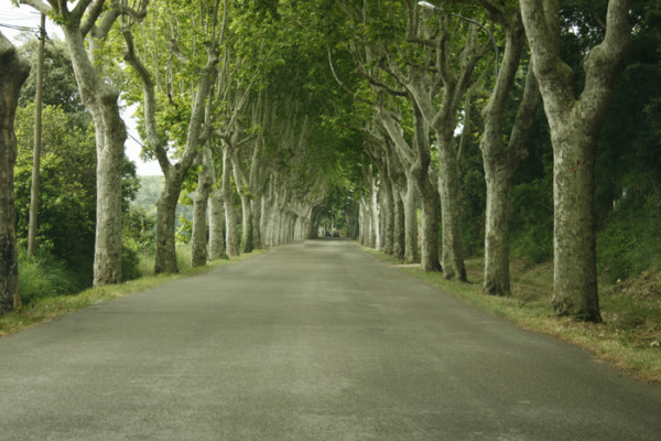 timothyb.anderson-Roadin southern France