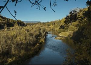 Sonoma County Residency